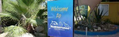 mediterraneo-marine-park-malta